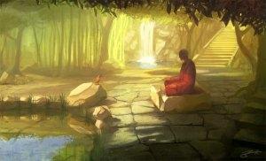 meditation man stenar natur