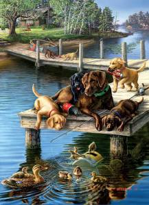 Hundar på bryggor