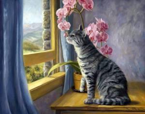 Katt gult fönster