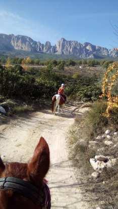 Hästridning Spanien 4