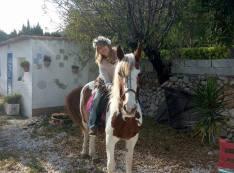 Hästar workshop